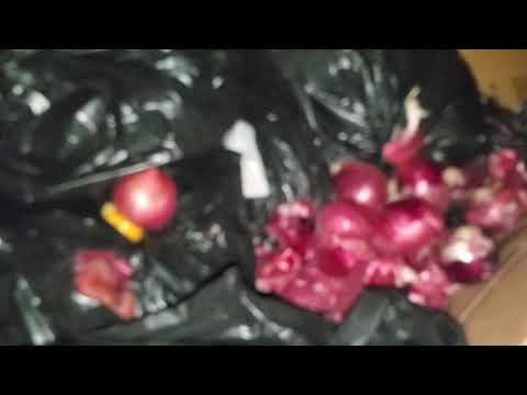 What happens when you get caught dumpster diving?